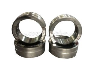 The Main Components Of The Valve - Valve Seat